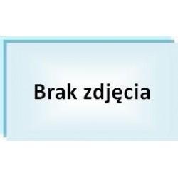 """Szafa 19"""" 42U wolnostojąca 800x600 Linkbasic"""